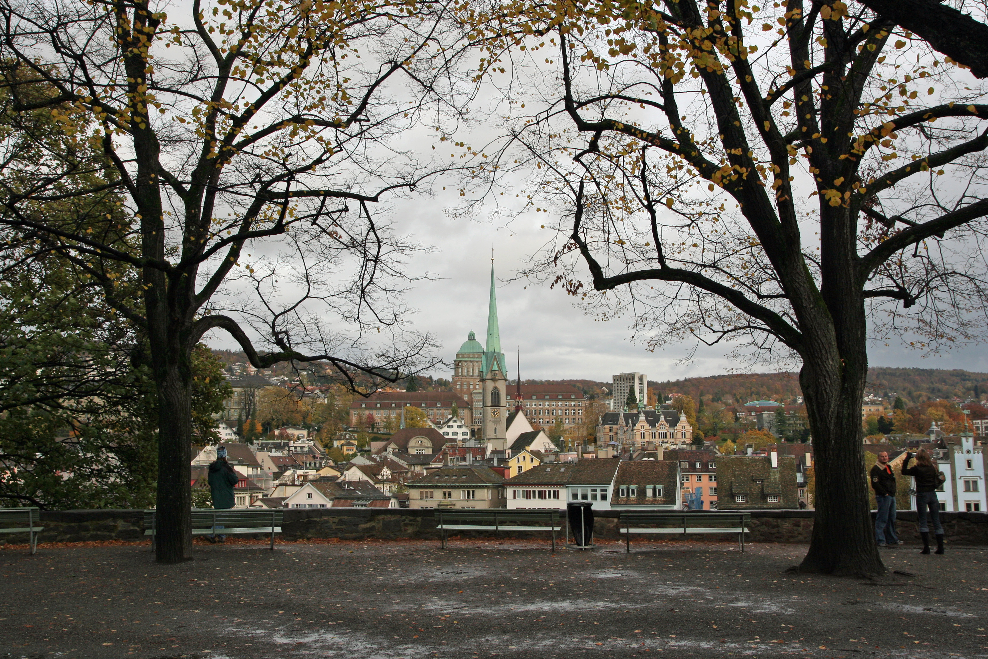 a best view from park in Lindenhof