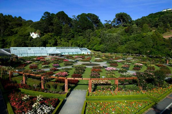 Wellington Botanic Garden view