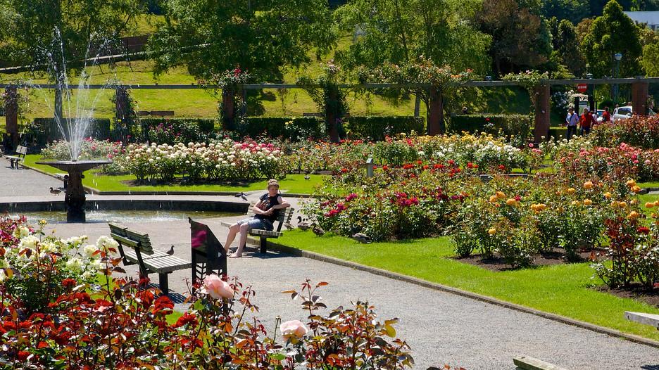 Wellington-Botanic-Garden