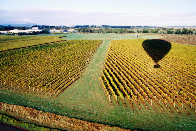 Yarra valley australia from hot air balloon in automn