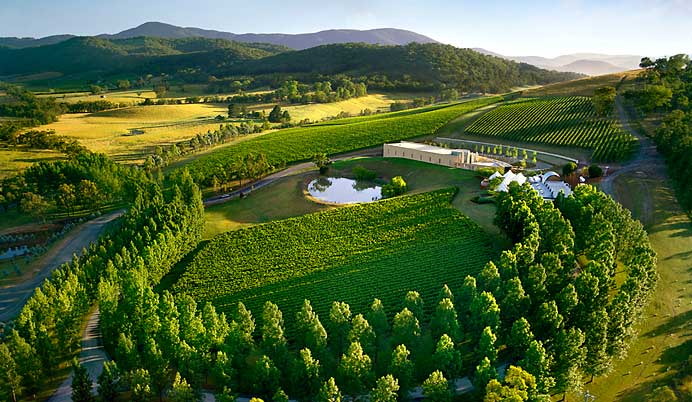 beautiful view of yarra valley australia