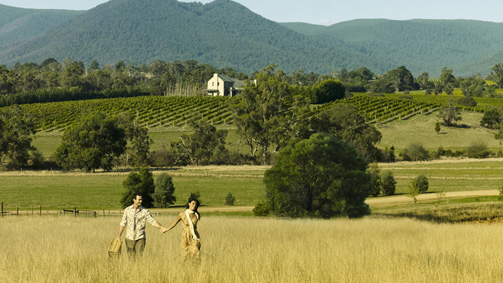 wineries of yarra valley