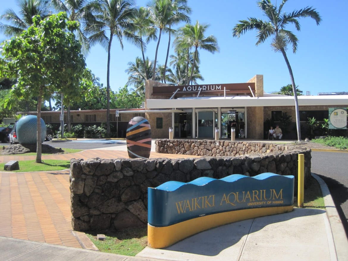 waikiki aquarium outside