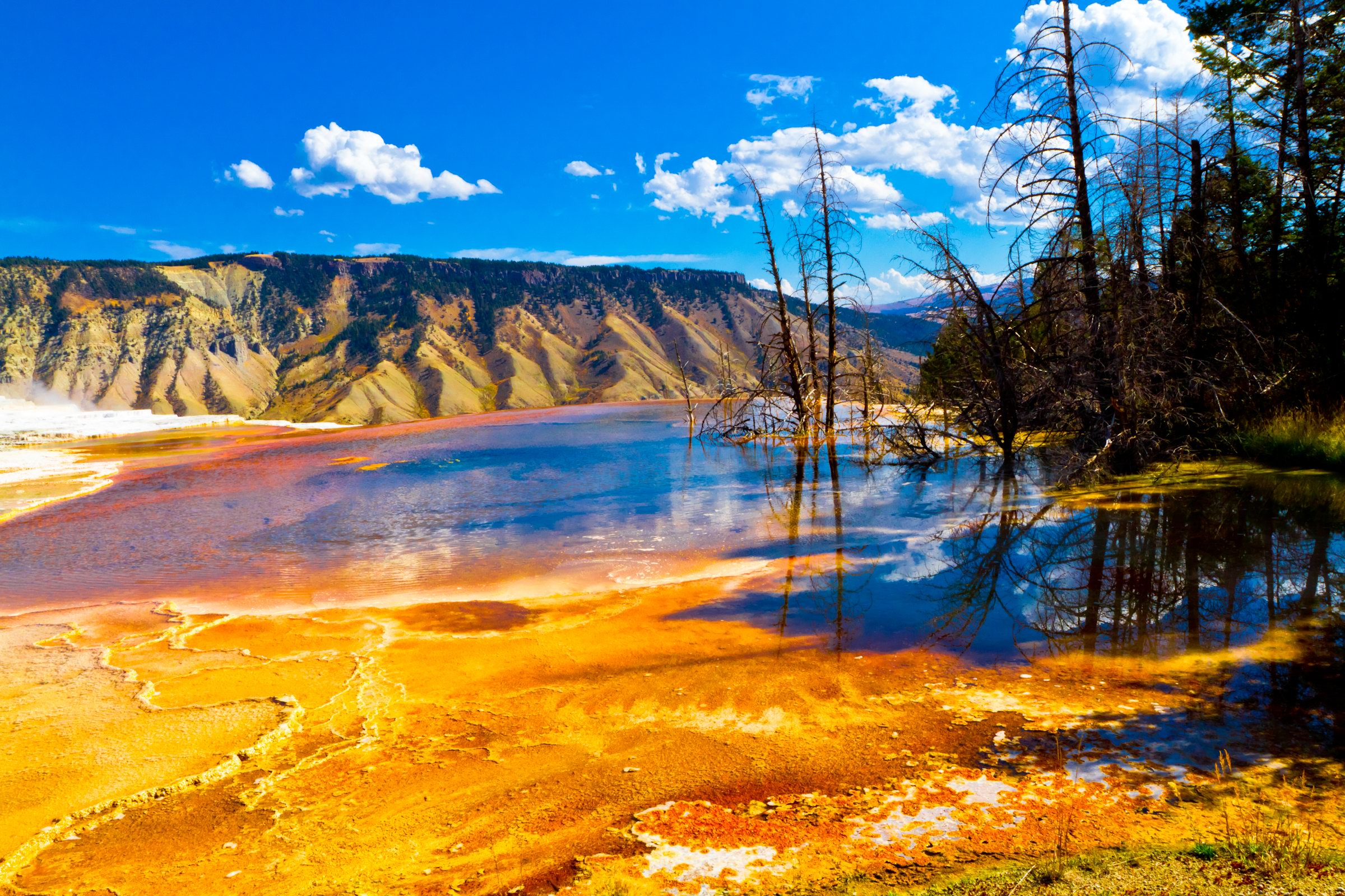 Yellowstone national parks in USA