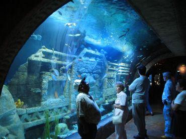 Downtown_Aquarium