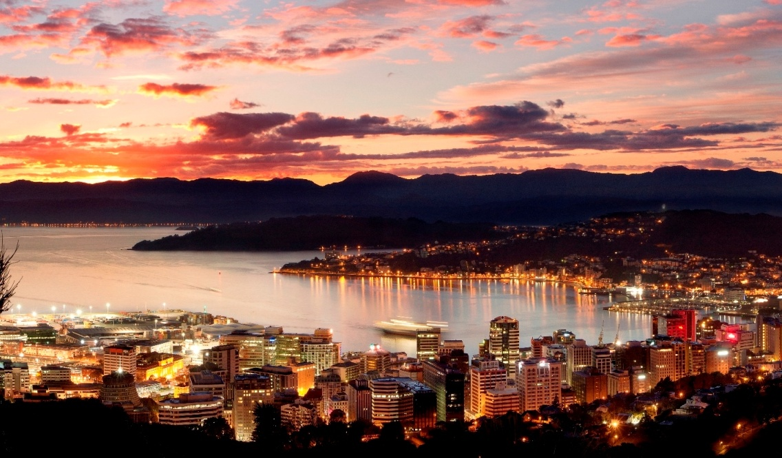Wellington skyline at night