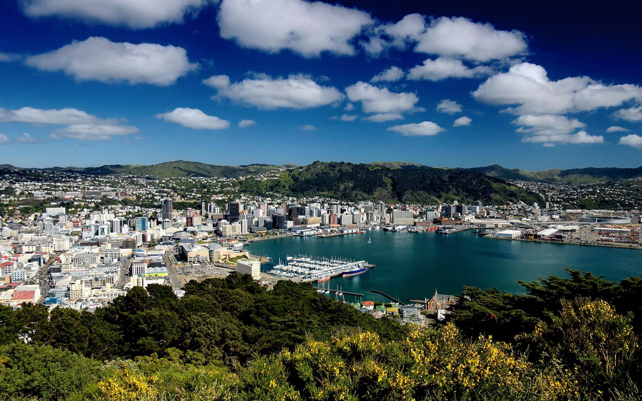 a beautiful view of Wellington