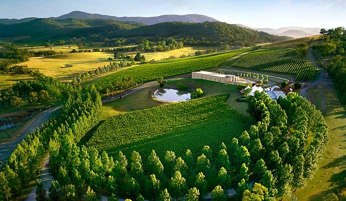beautiful view of yarra valley australia