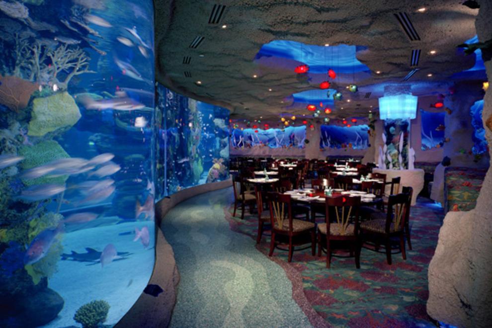 downtown-aquarium-restaurant