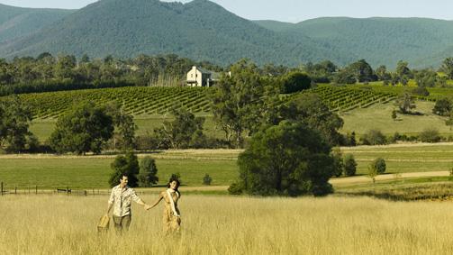 wineries of yarra valley