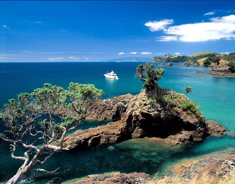 beautiful waiheke island