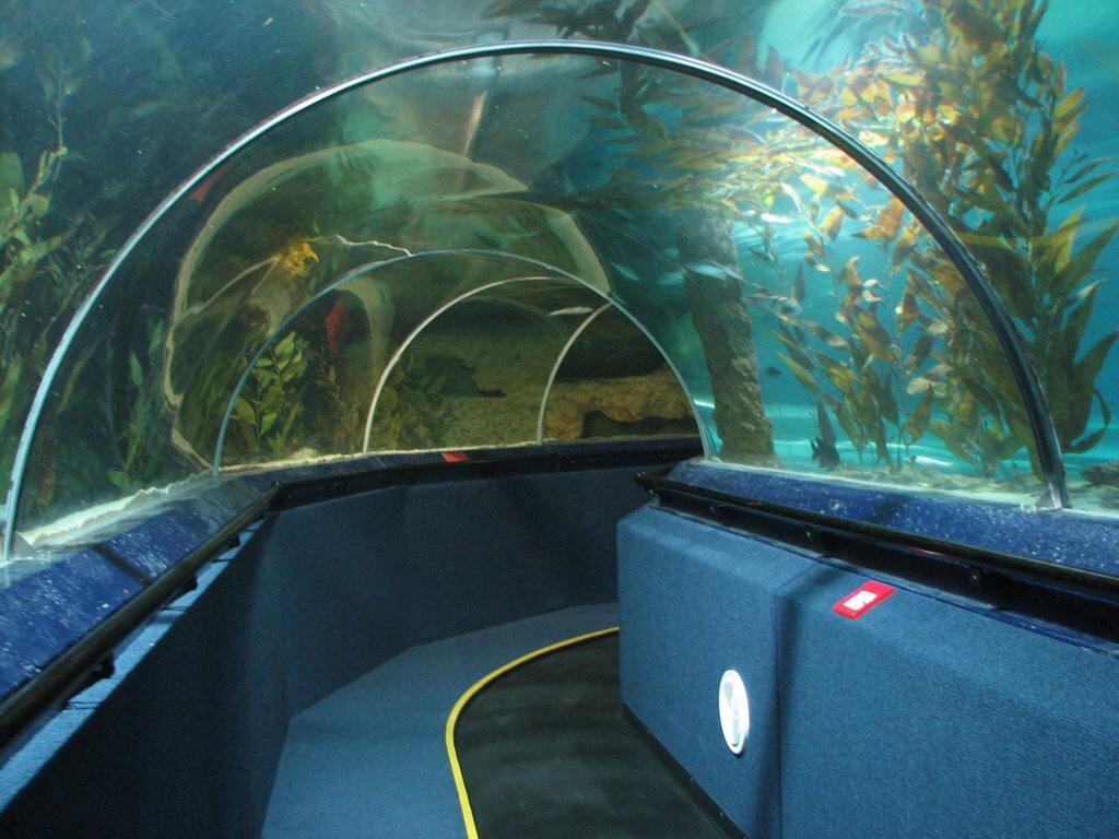 kelly tarlton's sea life aquarium inside