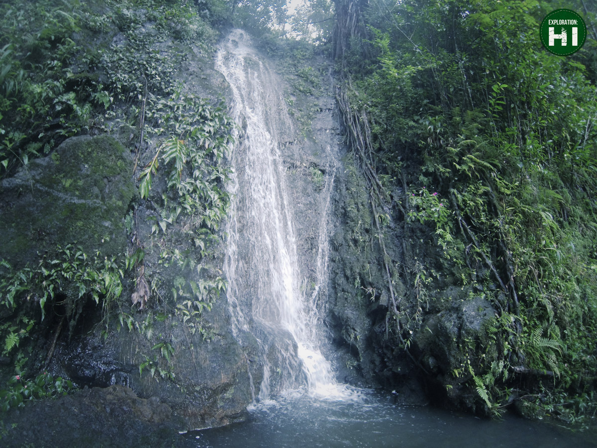 manoa-falls-waterfall-honolulu