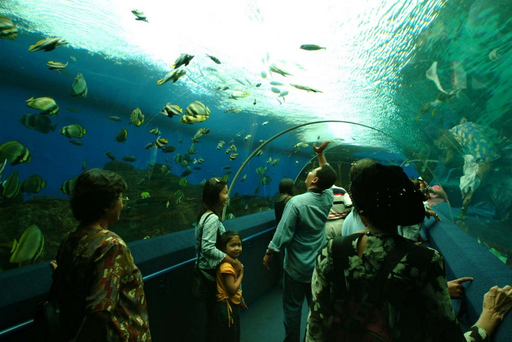 singapore underworld water